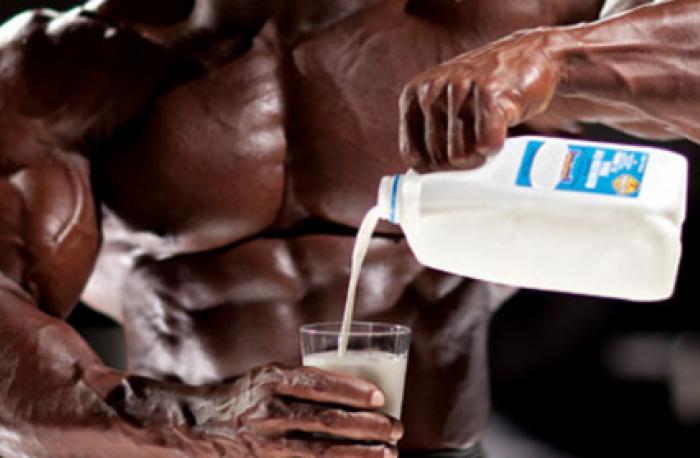 Môže mlieko kulturistom prospievať?