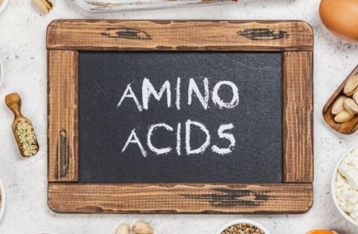 Aminokyseliny a ich význam pre ľudské telo